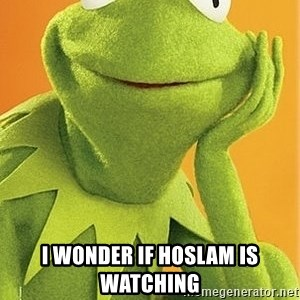 Kermit the frog - i wonder if hoslam is watching