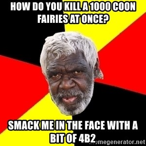 Aboriginal - How do you kill a 1000 coon fairies at once? Smack me in the face with a bit of 4b2
