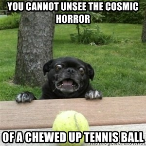 Ermahgerd Pug - you cannot unsee the cosmic horror of a chewed up tennis ball
