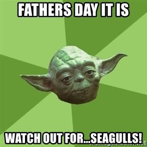 Advice Yoda Gives - fathers day it is watch out for...seagulls!