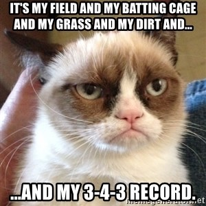 Grumpy Cat 2 - It's my field and my batting cage and my grass and my dirt and... ...and my 3-4-3 record.
