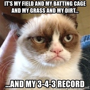 Grumpy Cat 2 - it's my field and my batting cage and my grass and my dirt... ...and my 3-4-3 record