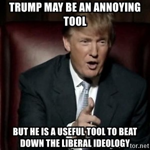 Donald Trump - trump may be an annoying tool but he is a useful tool to beat down the liberal ideology
