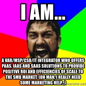 sparta - I am... a VAR/msp/csb/it integrator who offers paas, iaas and saas solutions to provide positive ROI AND efficiencies of scale to the smb market. (Oh man, I really need some Marketing help...)