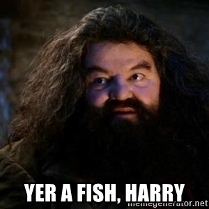 Yer A Wizard Harry Hagrid - Yer a fish, Harry