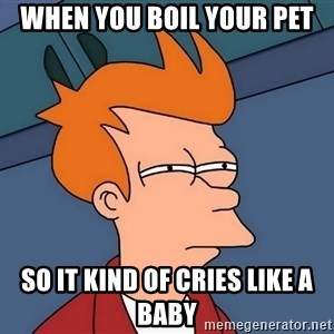 Futurama Fry - When you boil your pet so it kind of cries like a baby
