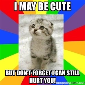 Cute Kitten - i may be cute but don't forget i can still hurt you!