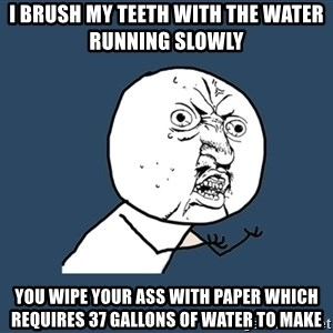 Y U No - I brush my teeth with the water running slowly  You wipe your ass with paper which requires 37 gallons of water to make