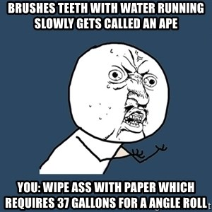 Y U No - Brushes teeth with water running slowly gets called an ape You: wipe ass with paper which requires 37 gallons for a angle roll
