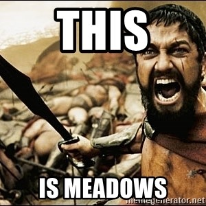 This Is Sparta Meme - This is Meadows