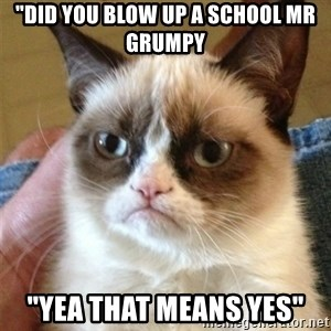 """Grumpy Cat  - """"did you blow up a school mr grumpy """"yea that means yes"""""""