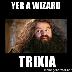 You're a Wizard Harry - YER A WIZARD   TRIXIA