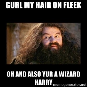 You're a Wizard Harry - gurl my hair on fleek oh and also yur a wizard harry