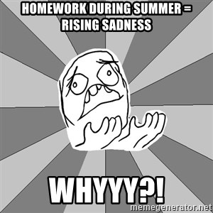 Whyyy??? - Homework during summer = rising sadness WHYYY?!