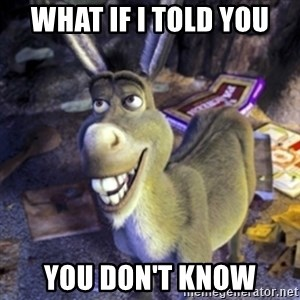 Donkey Shrek - What if I told you YOU DON'T KNOW
