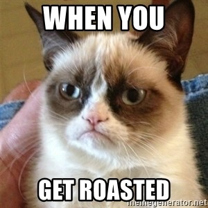 Grumpy Cat  - when you  get roasted