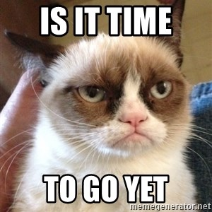 Grumpy Cat 2 - IS IT TIME  TO GO YET