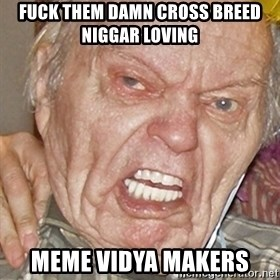 Grumpy Grandpa - Fuck them damn cross breed niggar loving meme vidya makers