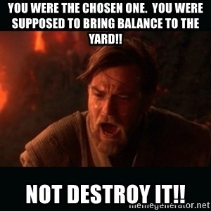 "Obi Wan Kenobi ""You were my brother!"" - You were the chosen one.  You were supposed to bring balance to the yard!! Not destroy it!!"