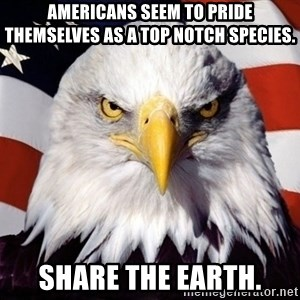 American Pride Eagle - Americans seem to pride themselves as a top notch species. Share the Earth.