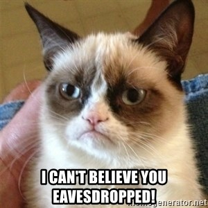 Grumpy Cat  - I can't believe you eavesdropped!