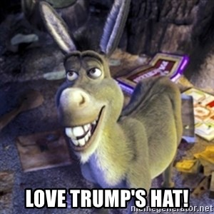 Donkey Shrek - Love Trump's Hat!