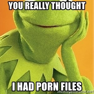 Kermit the frog - you really thought  i had porn files