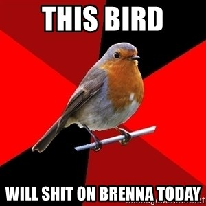 Retail Robin - This Bird Will Shit On Brenna Today