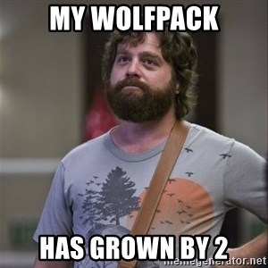 Alan Hangover - My Wolfpack Has grown by 2