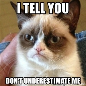 Grumpy Cat  - I tell you don't underestimate me