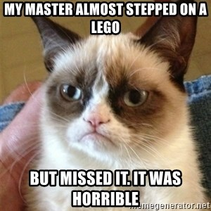 Grumpy Cat  - My master almost stepped on a lego But missed it. it was horrible