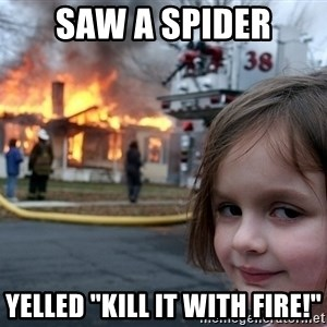 "Disaster Girl - Saw a spider Yelled ""KILL IT WITH FIRE!"""