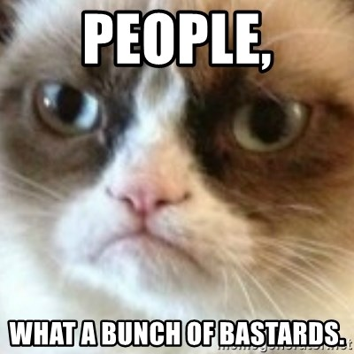angry cat asshole - People, wHAT A BUNCH OF bASTARDS.