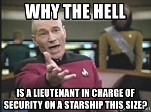 Picard Wtf - why the hell is a lieutenant in charge of security on a starship this size?