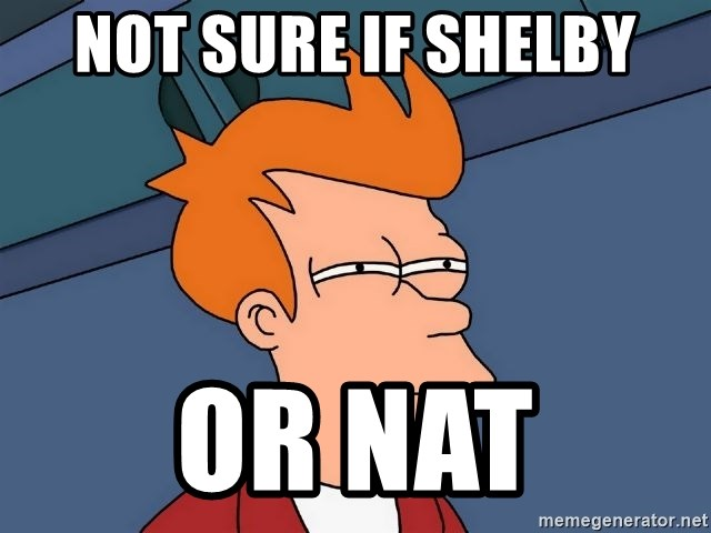 Futurama Fry - Not sure if shelby or nat