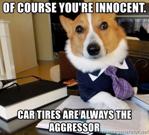 Dog Lawyer - Of course you're innocent. car tires are always the aggressor
