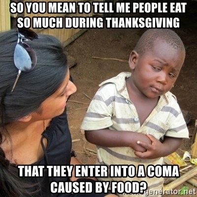 Skeptical 3rd World Kid - so you mean to tell me people eat  so much during thanksgiving that they enter into a coma caused by food?