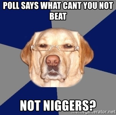 Racist Dawg - poll says what cant you not beat  not niggers?
