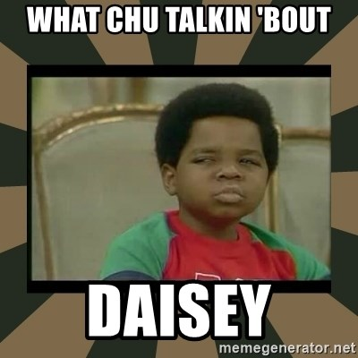 What you talkin' bout Willis  - What chu talkin 'bout daisey