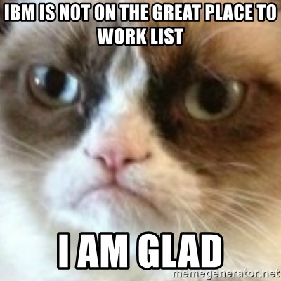 angry cat asshole - IBM IS NOt On THE GREAT PLACE TO WORK LIST I AM GLAD