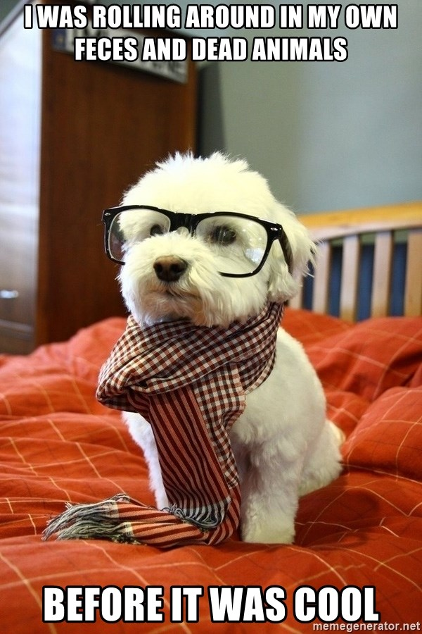 hipster dog - I was rolling around in my own feces and dead animals before it was cool