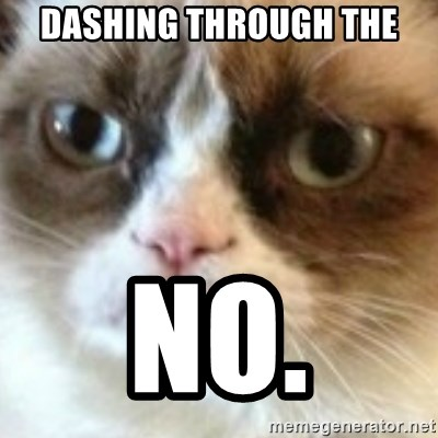 angry cat asshole - DASHING THROUGH THE NO.