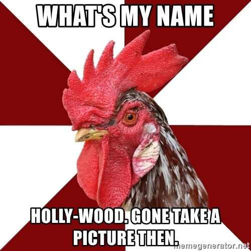 Roleplaying Rooster - WHAT'S MY NAME hOLLY-WOOD. GONE TAKE A PICTURE THEN.