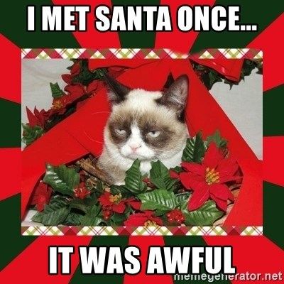 GRUMPY CAT ON CHRISTMAS - i met santa once... it was awful