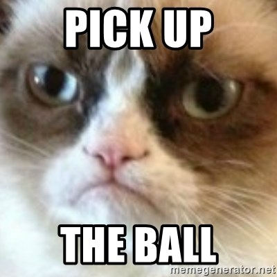 angry cat asshole - PICK UP THE BALL