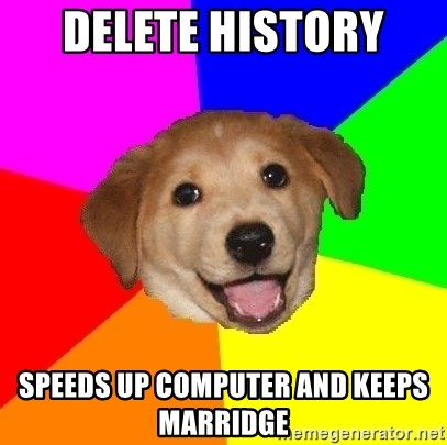 Advice Dog - Delete history  Speeds up computer and keeps marridge