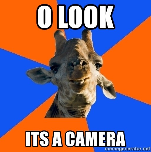 Douchebag Giraffe - o look its a camera