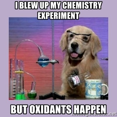 Dog Scientist - I blew up my chemistry experiment but oxidants happen