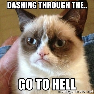 Grumpy Cat  - dashing through the.. go to hell