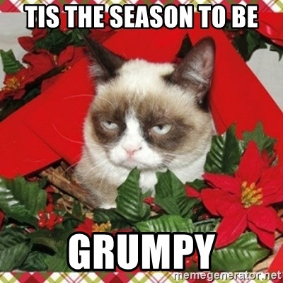 Grumpy Christmas Cat - Tis the season to be grumpy
